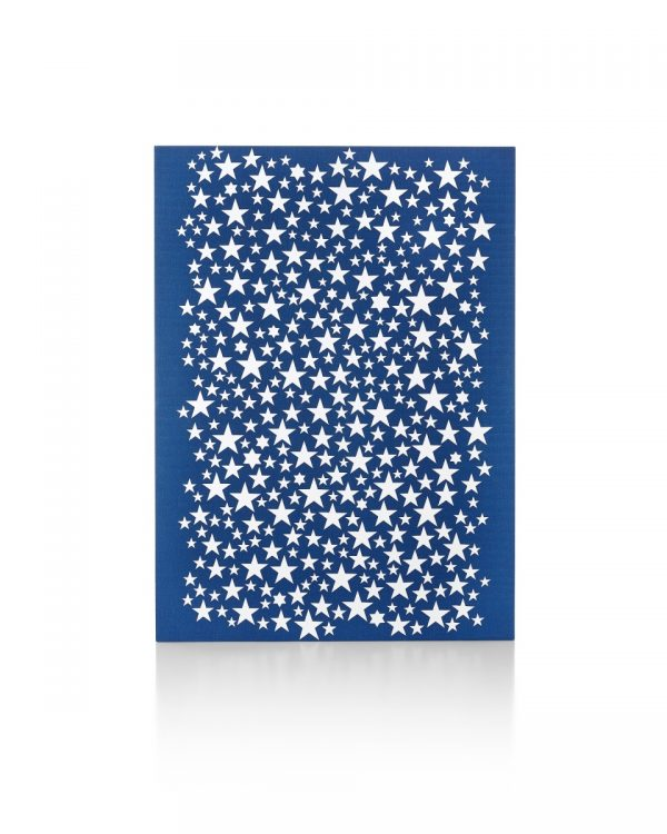Girard Environmental Enrichment Panels with Star Patterns on Blue Background